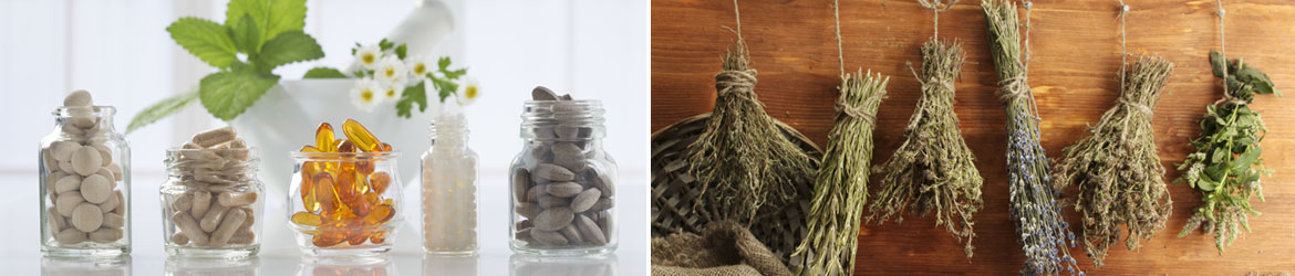 nutrition supplements herbs